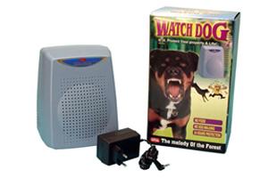 alarme chiens