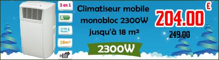 Climatiseur mobile monobloc 2300W