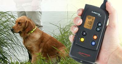 Collier de dressage lectronique distance canicom 1500m pour 1 chien - Chatiere electronique sans collier ...